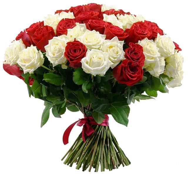 Hoa tặng sinh nhật người yêu